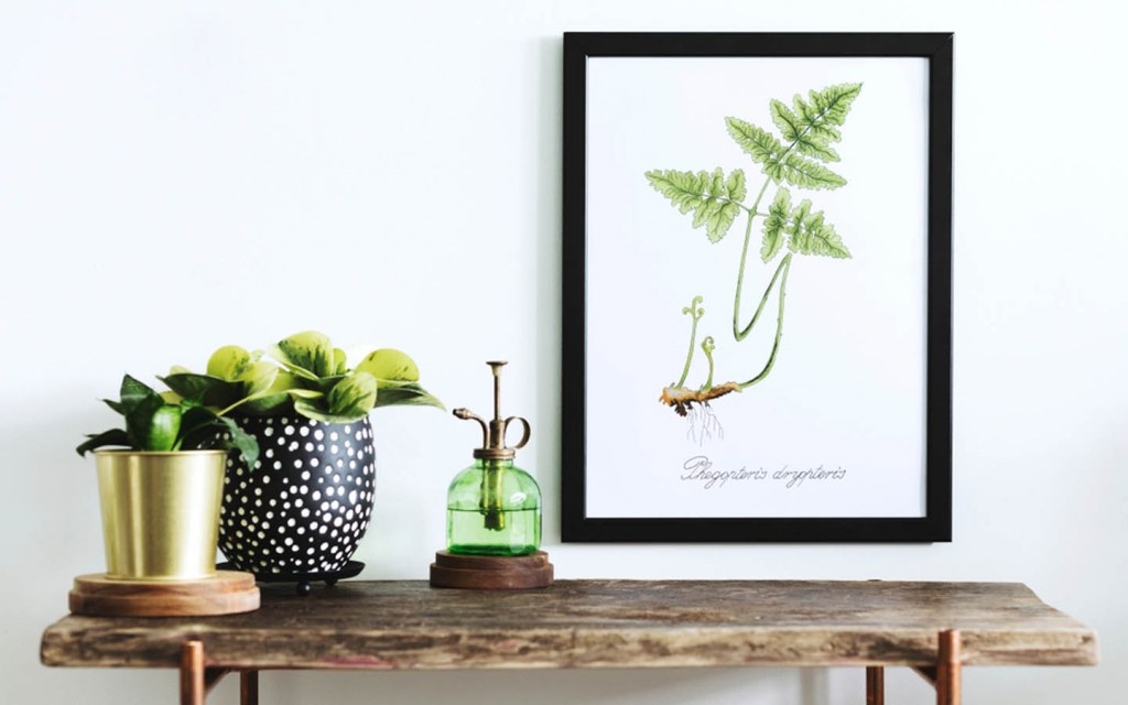 update the décor for your home